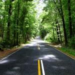Journey Down Road 1361700-640x480
